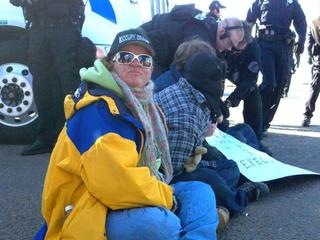 Occupy-Walmart-Loveland-Arrests-1-12-12-2011-29979658.jpg