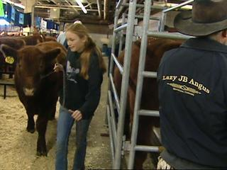 Stock show set attendance record on Sunday
