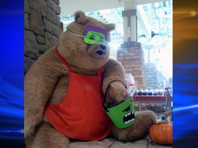 Truffels A Big Popular Teddy Bear Swiped From Sweet