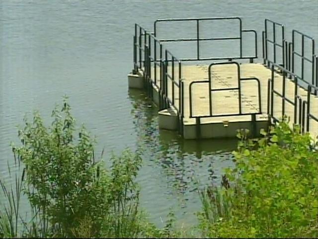 Expert Pond Creature Probably Dead Denver7