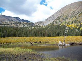 Meadow-Near-Breckenridge-14172857.jpg