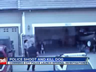 Police_shoot_dog__chief_orders_investiga_117320000_20121127004141