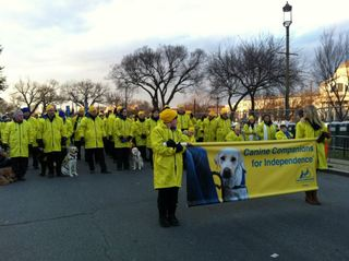 Canine Companions fro Independence at the 2013 Inaugural Parade