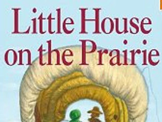 little-house_1359982628194.jpg