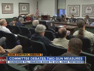 Gun_committee_passes_background_check_pl_314330000_20130213012014