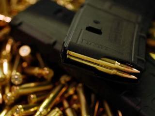 5 gun bills die in committee at Capitol