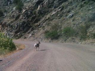 Waterton Canyon closed 3 months, except Sundays
