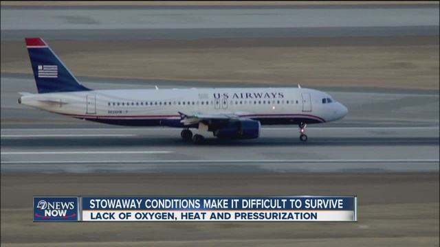 16-year-old survives in wheel well of California flight to Hawaii at