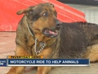Adoptable pets get help from motorcyclists