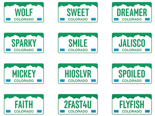 Today: Custom plates go on auction for charity