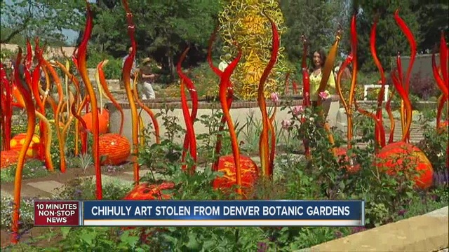 3 Pieces From Chihuly Cat Tails Sculpture Stolen Denver Botanic Gardens