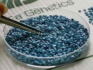 No more GMO crops on Boulder County public land