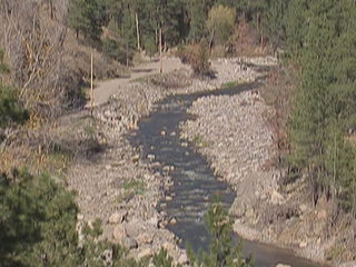 Trout population declining in Colorado rivers