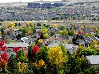 USFS backs expansion of Colorado coal mine