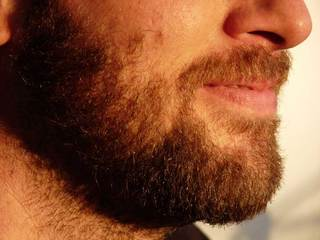 Survey: Sporting beards could turn a lady off