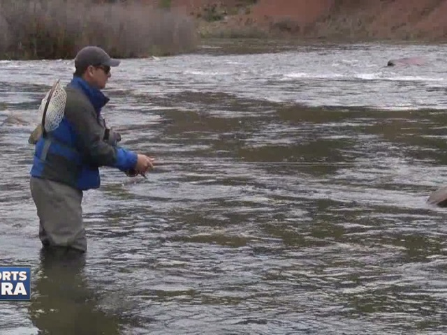 Fly fishing in cheesman canyon the denver channel for Canyon lake fishing ca
