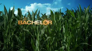 'The Bachelor' casting call comes to Denver!