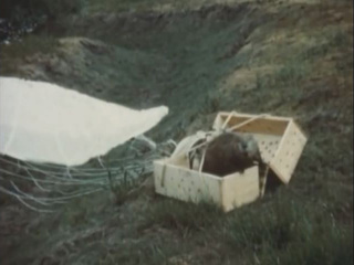 WATCH: Beavers dropped from the sky in Idaho