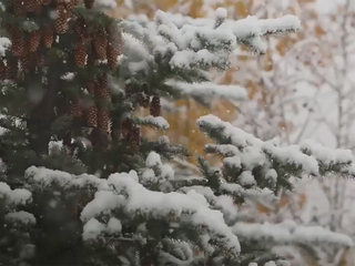 What our late 1st snowfall means for the season