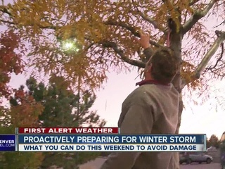 Weekend plans might need to include storm prep