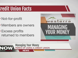 What are credit unions and how do they work?