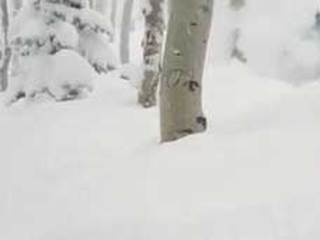 Camping couple rescued from forest road in snow