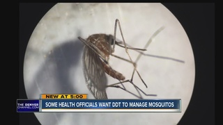Zika transmitted by sex