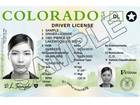 Colorado to test digital driver licenses