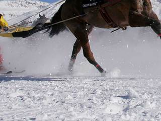 Drone blamed for skijoring injuries