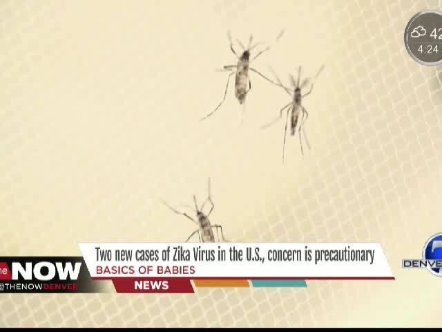 Zika Virus in the US