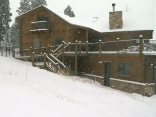 Estes Park homeowner finds bear inside his house