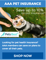 Get low rates on term life insurance