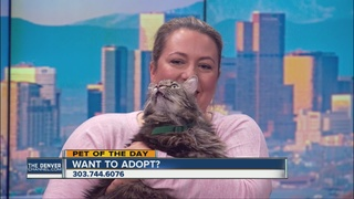Pet of the day for April 30