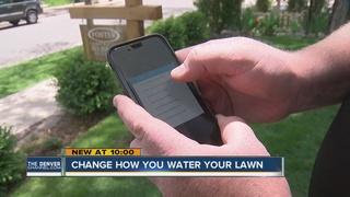 Smart sprinkler controller saves water and money