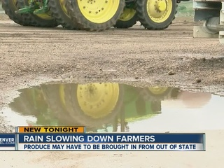 Wet weather could raise price of produce