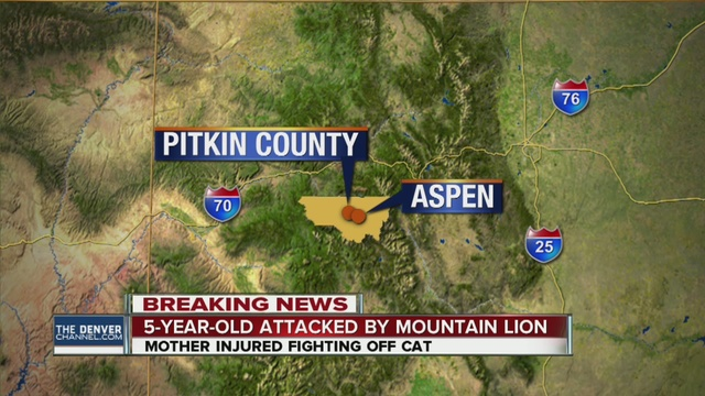 Mountain lion mauls boy: Mom Saves Child For Mountain Lion's Grip