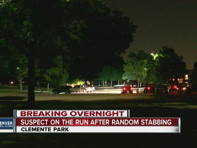 1 person hospitalized after park stabbing