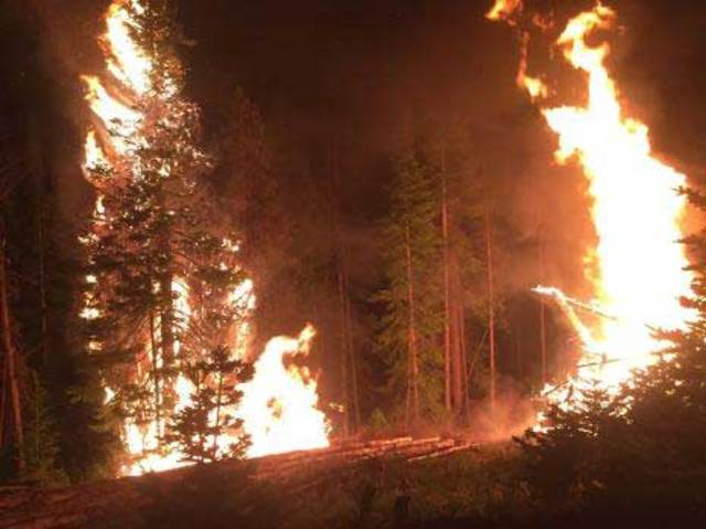 Beaver Creek wildfire grows to 11,776 acres