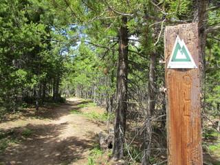 Hiking Segment 10 of The Colorado Trail