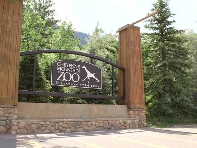 Discover Colorado - Cheyenne Mountain Zoo