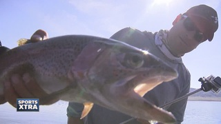 How to land a trophy fish at Spinney