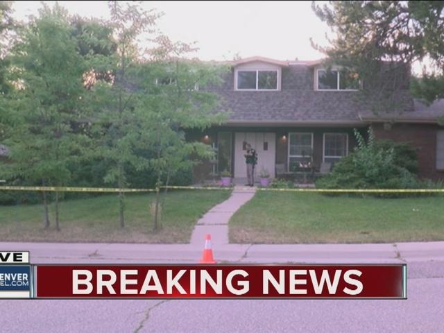 Homeowner stabbed