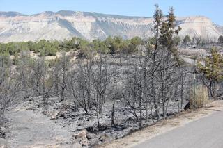 Evacuations lifted for Spring Creek 2 Fire