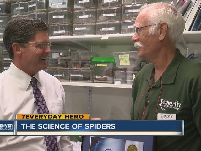 Volunteer feeds tarantulas for the Butterfly Pavilion