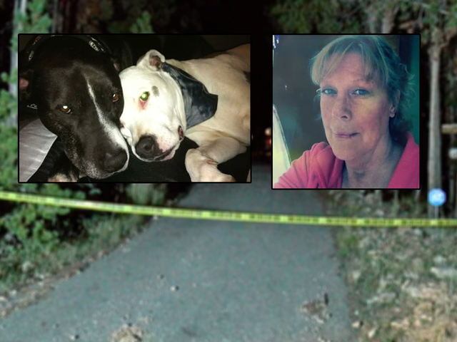 fatal dog attacks the stories behind The states of california and texas had the most fatal dog attacks in 2011,  2005 us dog bite fatalities in 2005, 29 dog attacks resulted in human death: .