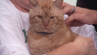 Pet of the day for September 3rd