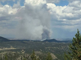 Large fire in Larimer County continues to burn