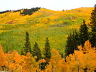 PHOTOS: Look at the fall colors at Kenosha Pass