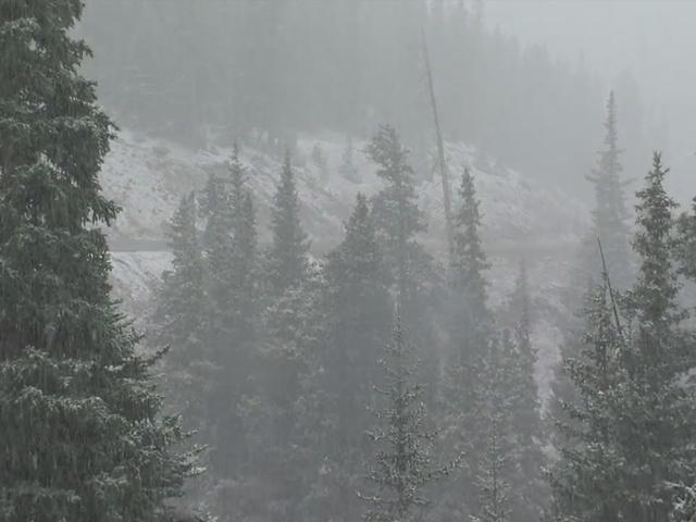 Long range winter forecast