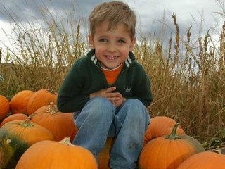 10 fun Colorado Pumpkin Patches to check out!